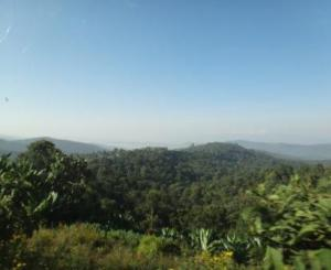PNG Red Mountain